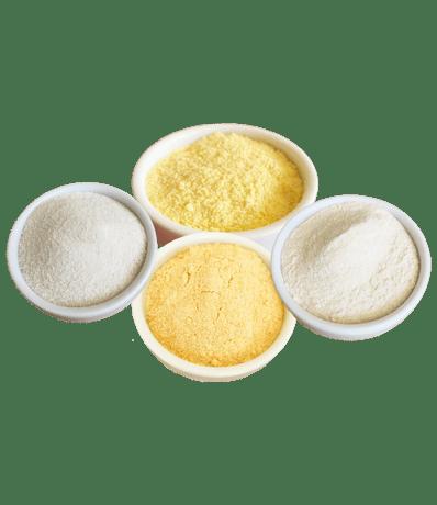 1801_yellow_lentil_wheat H1_rice_TM40_maize H1