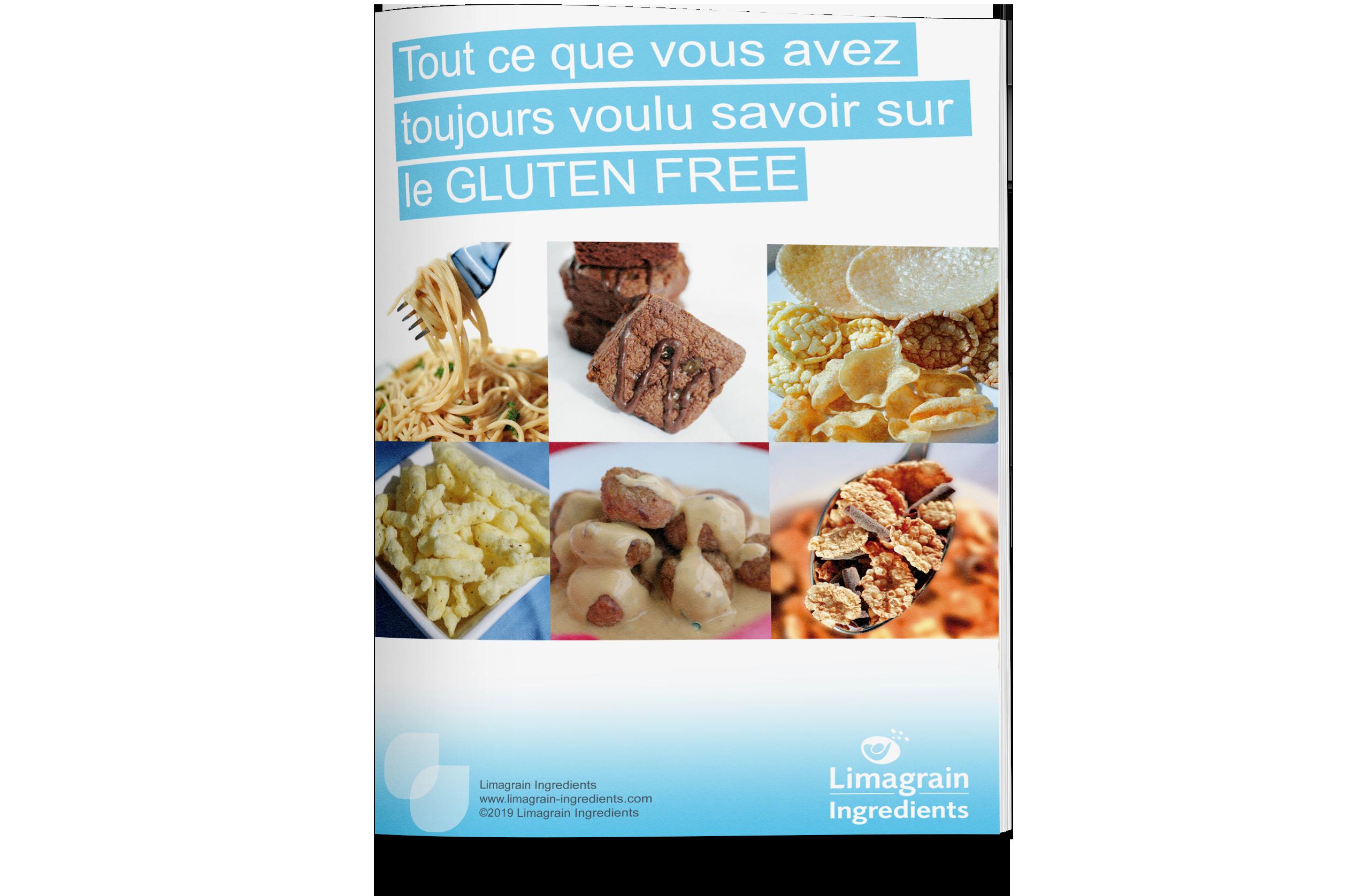 0202_ebook_gluten_free_mockup_FR
