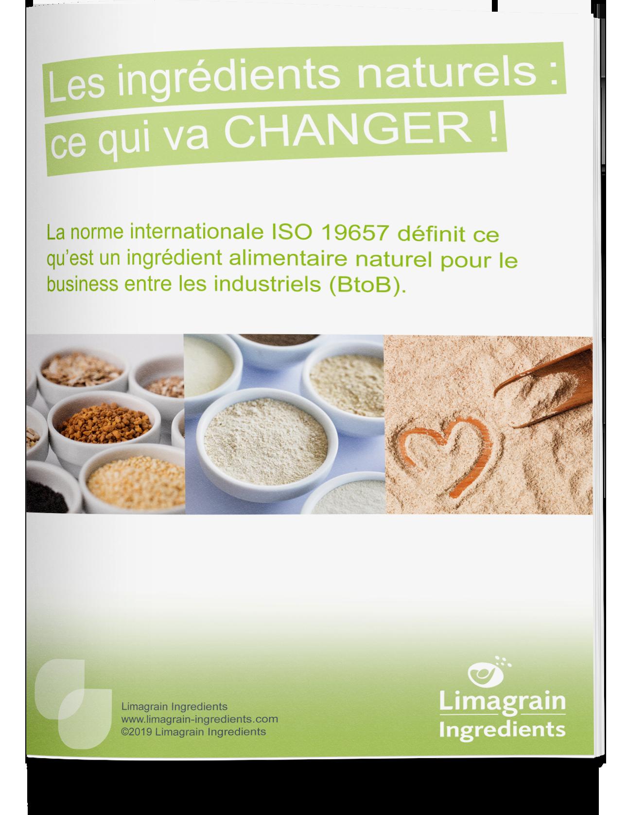 0202_ebook_natural_ingredients_mockup_EN_small