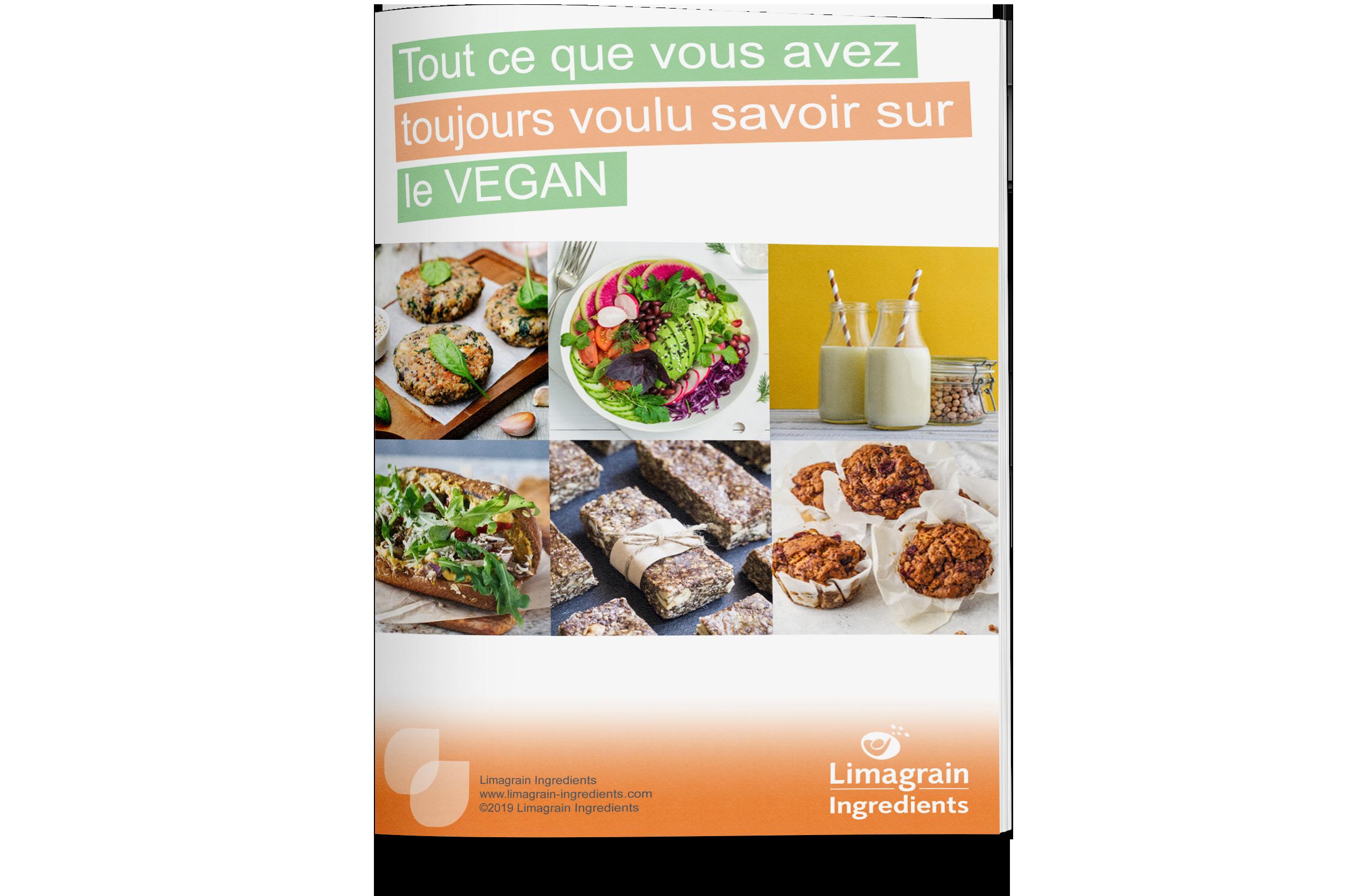 0202_ebook_vegan_mockup_FR